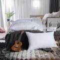 太湖雪枕芯 羽丝绒枕芯枕头芯 48*74cm 1只装